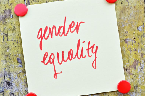 Northern Territory Gender Equality Framework